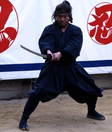 What do you know about ninjas?