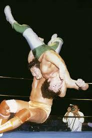 What would be your top 5 favorite wrestling finishing moves?