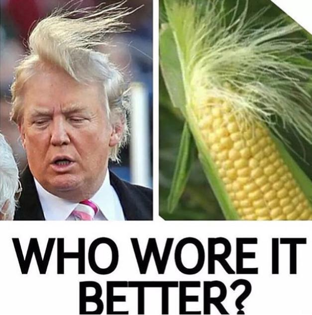 How does Donald Trump's hair stay on?