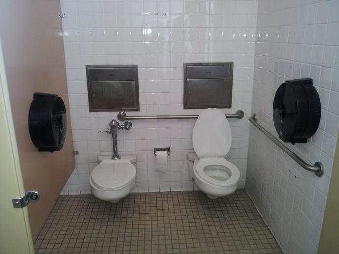 Has anyone used a toilet like this?
