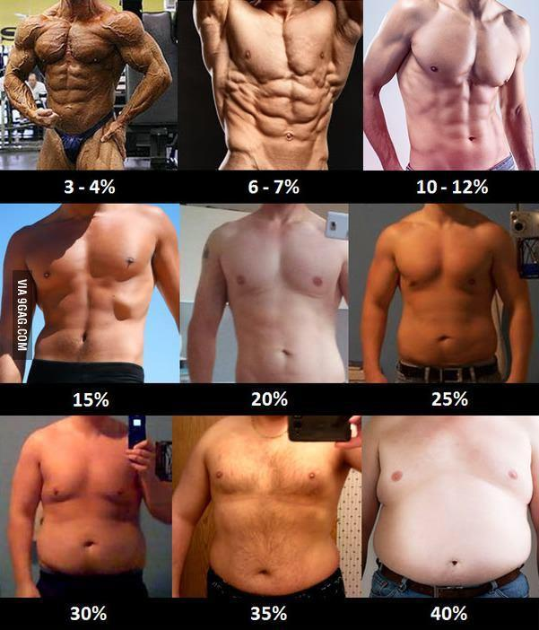 Which of these body fat percentages am I currently closest to and which one looks the best?