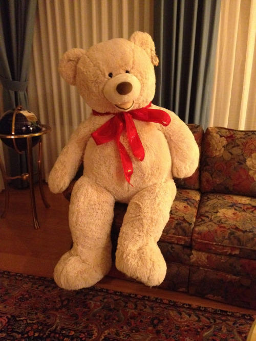 Girls if your boyfriend bought you those big huge teddy bears would you like that?