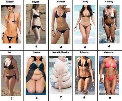 Which female body type do you prefer?