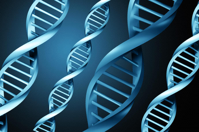 Have you ever had a DNA test to know your ancestry? If not would you do it?
