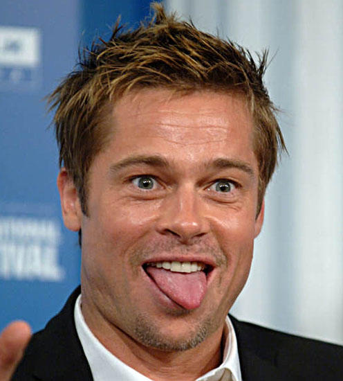 What do you think Brad pitt's sexual orientation is?