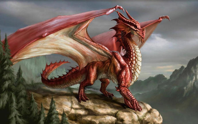 What is your favorite kind of dragon?