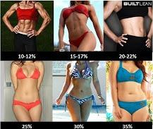 Which body type do you find the most attractive?