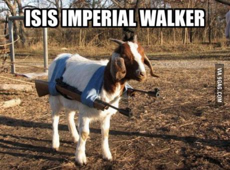 did you know isis have some surprising members??