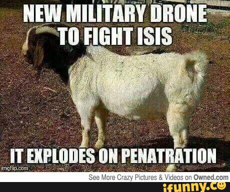 I hear if you have goats its pretty easy to capture some Daesh, is this true?