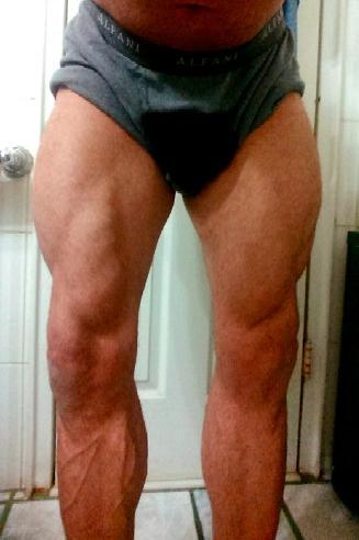 Upper body vs Lower body muscle?
