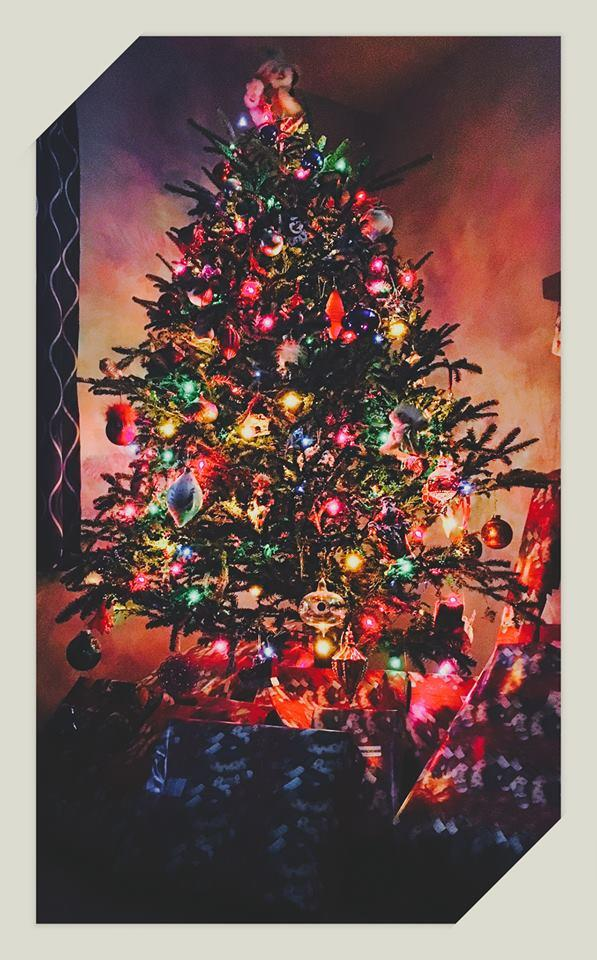 What do your Christmas trees look like?