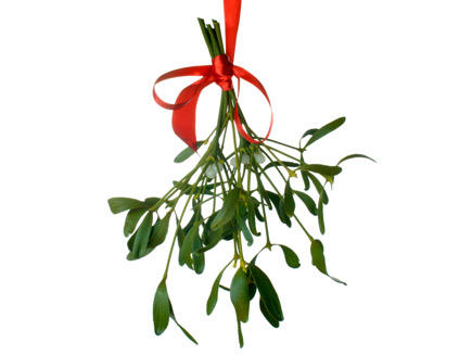 Mistletoe game?
