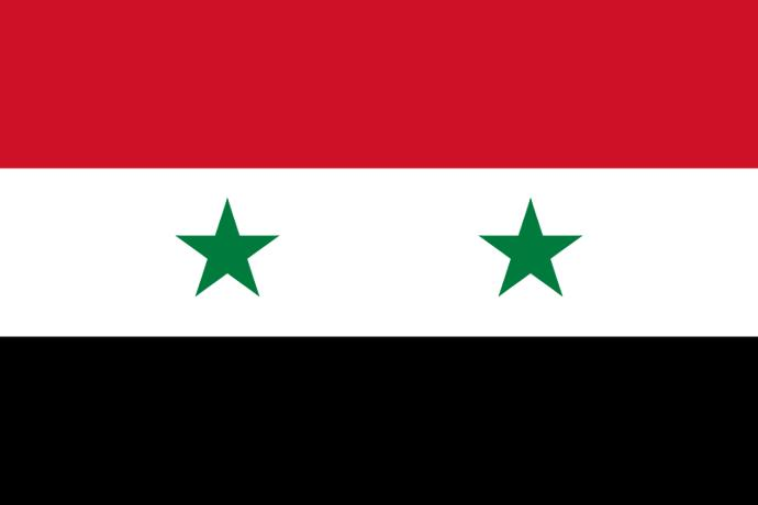 Who do you support in the Syrian Civil War?