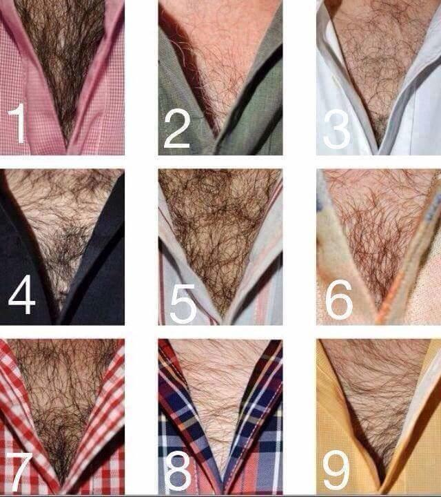 How hairy can you like a man chest?
