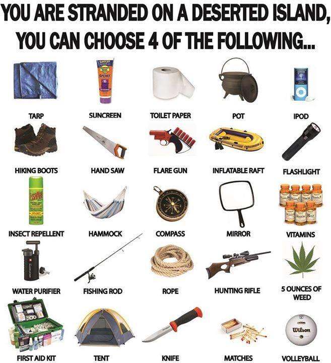 Which 4 items would you choose if you were stranded on a deserted island?