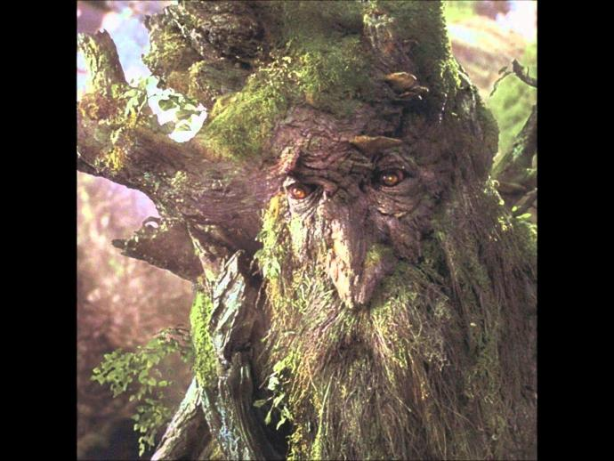 If you turned into a walking and talking Tree what would you do?