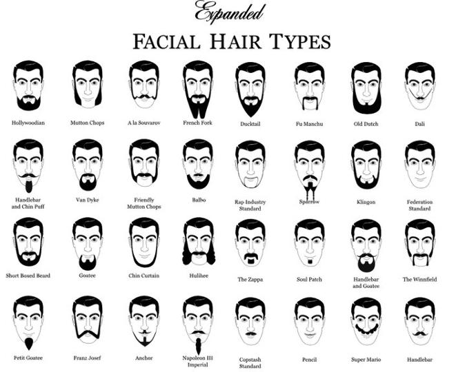 What type of facial hair do you prefer on your man?