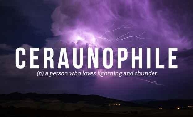 Are you a ceraunophile?