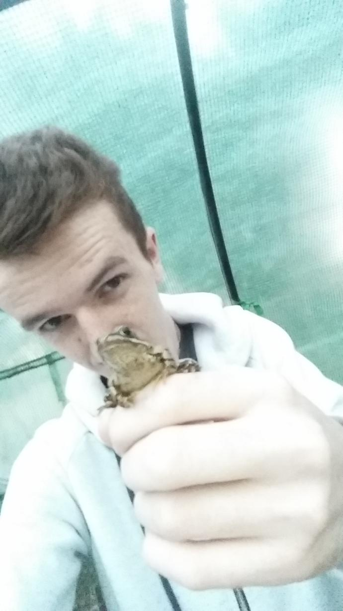 Rate this frog? (My photography)? + Seflie feat: Froakie?