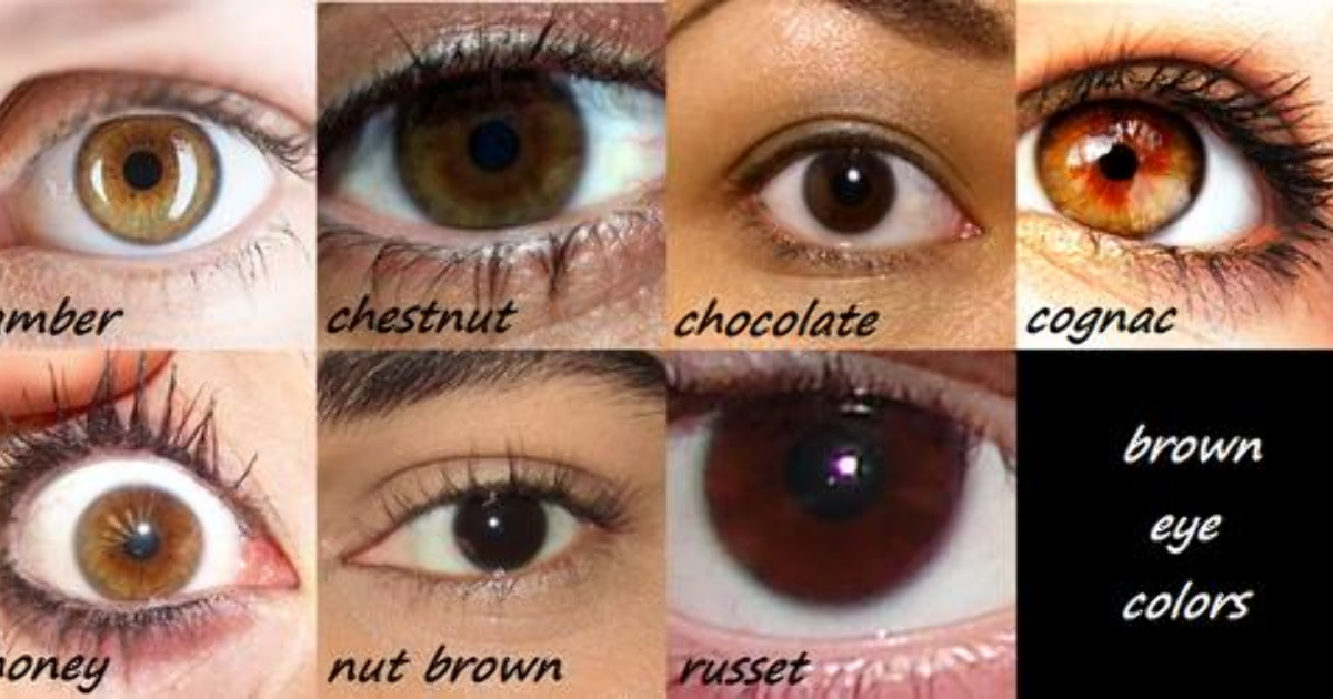 Which is the most common shade of brown eyes? - GirlsAskGuys