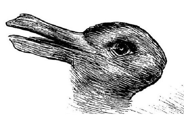 Do you see a duck or a rabbit in this picture?