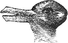 Do you see a duck or a rabbit?