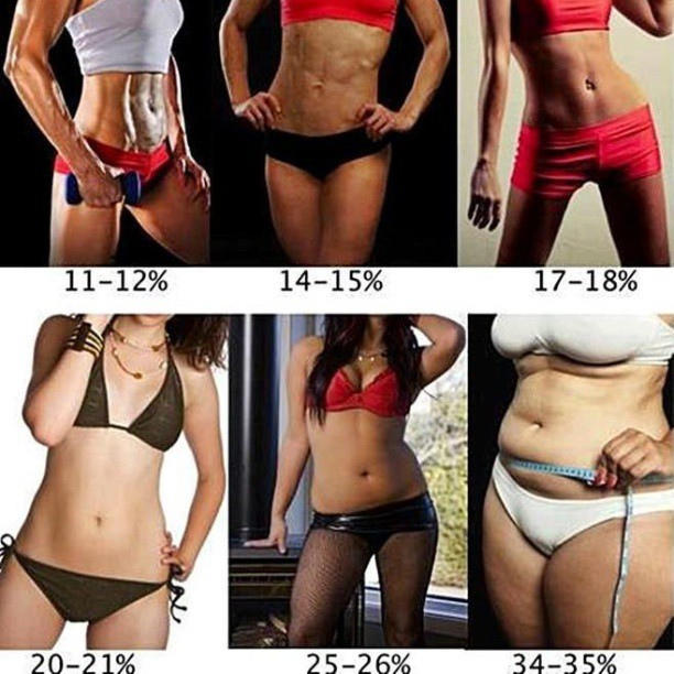 Which body is the most attractive?