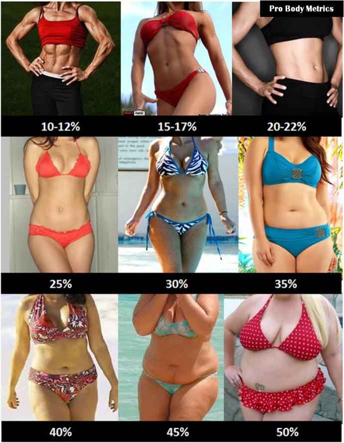 Which is the best body here in your opinion?