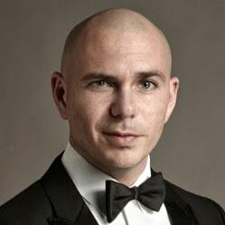 Wonder if Pitbull is actually a pit bull dog?