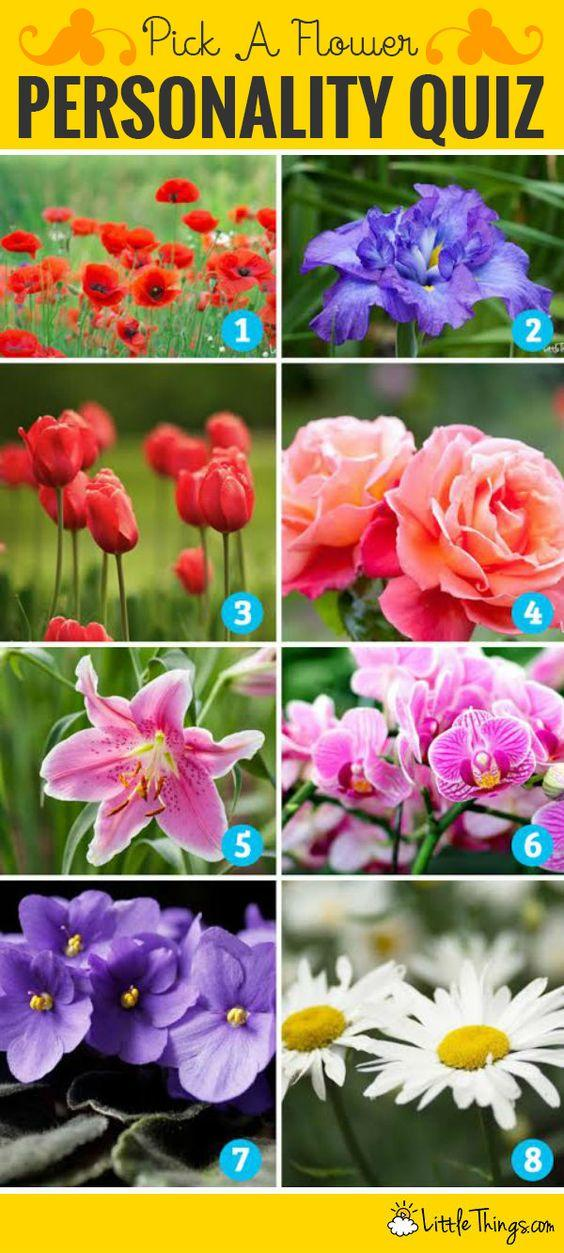 Personality test: which is your favorite flower?