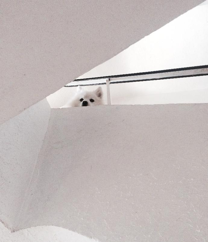 Do you ever feel watched when you're alone in the house?