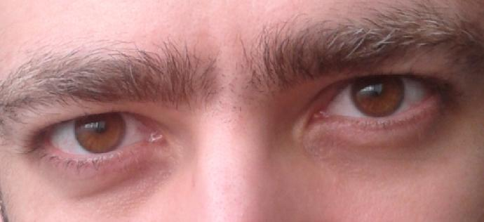 how are my sexy eyebrows :D ?