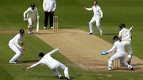 Rate this sport: Cricket?