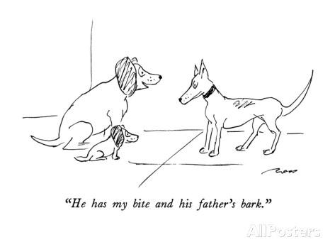 Does your bark have bite?