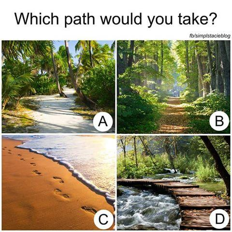 Which path would you choose and why?