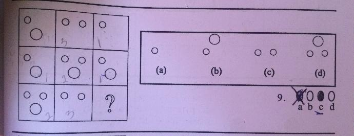 Help with this IQ Test?
