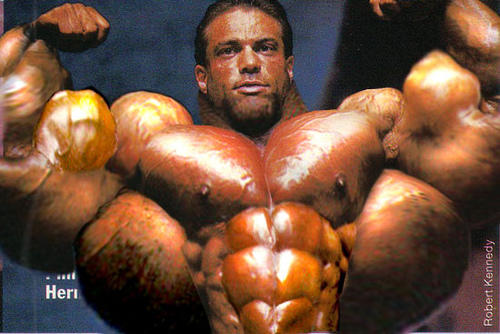 How do you feel about male bodybuilders?