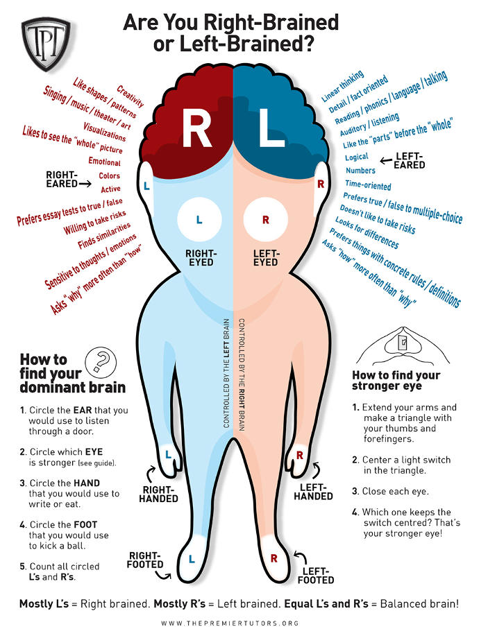 Are you more right or left brain dominant?