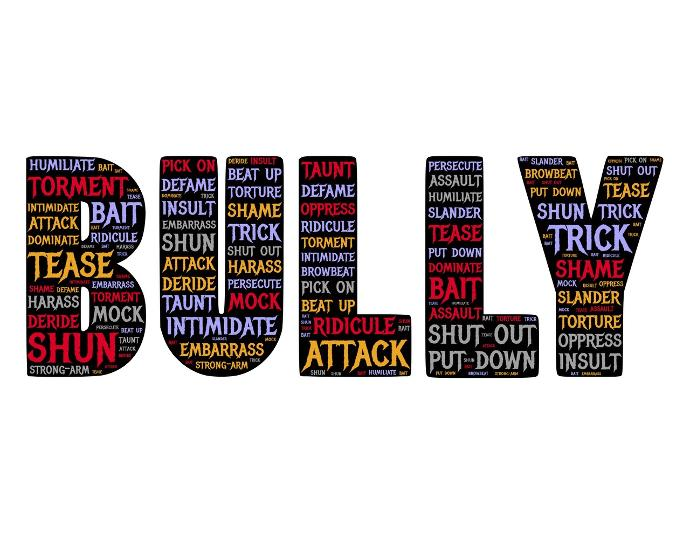 Have you ever been bullied or bullied someone either currently or in the past?