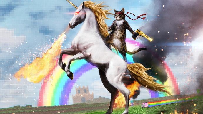 How are unicorns made?