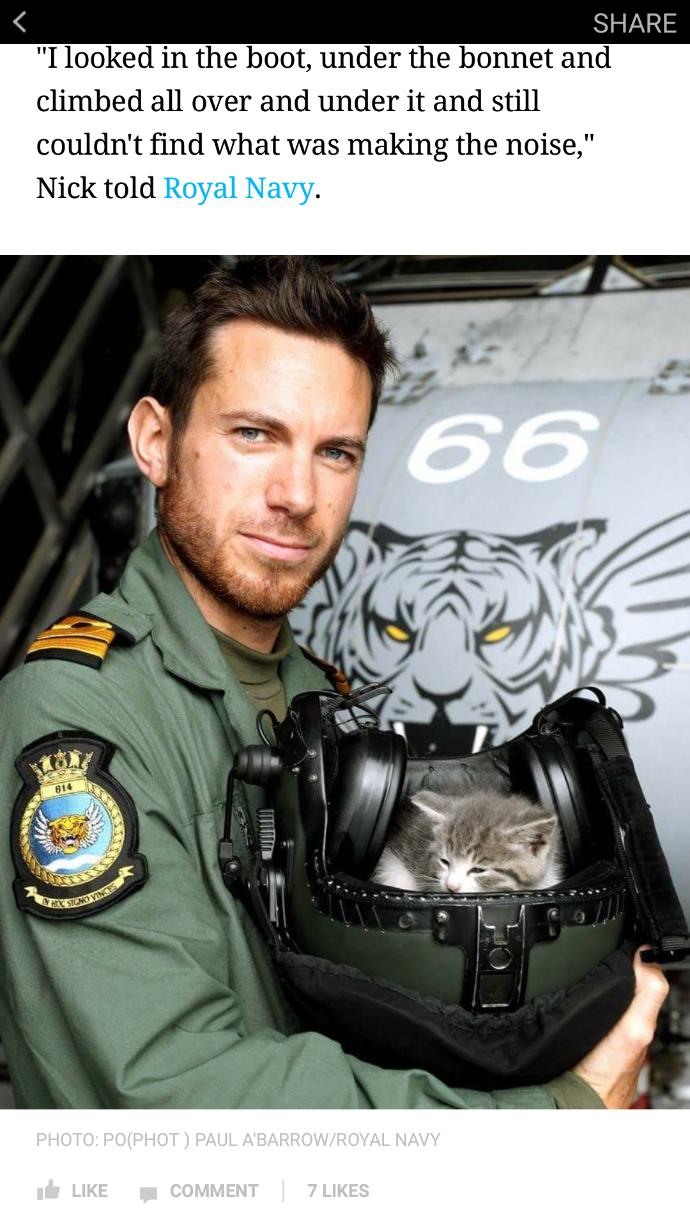 Girls, This Hot British Navy Pilot Rescued a Kitten! Isn't he the trifecta of perfection?