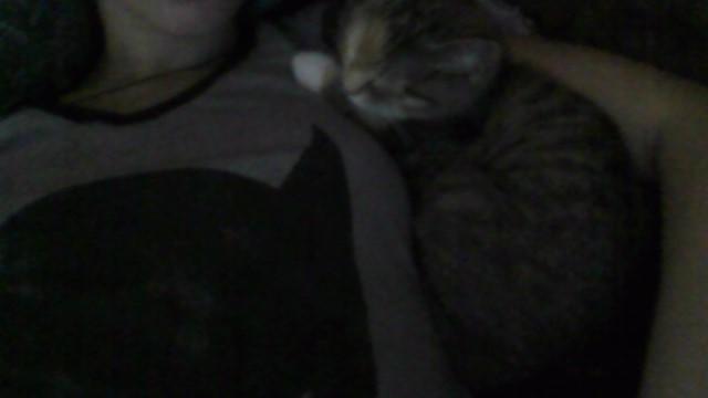 Isn't my cat adorable?