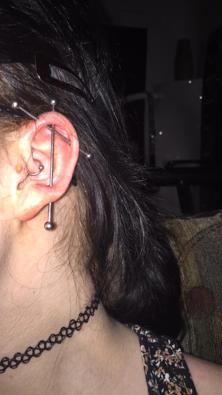 How do my ear piercings look?
