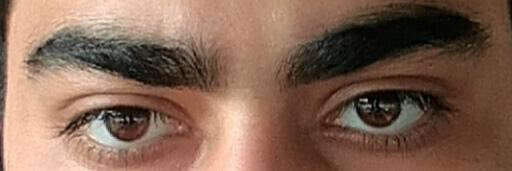 What do you think of these brows?