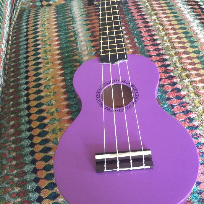 who here plays the ukulele ?