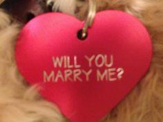 Am I being unrealistic about my dream proposal?