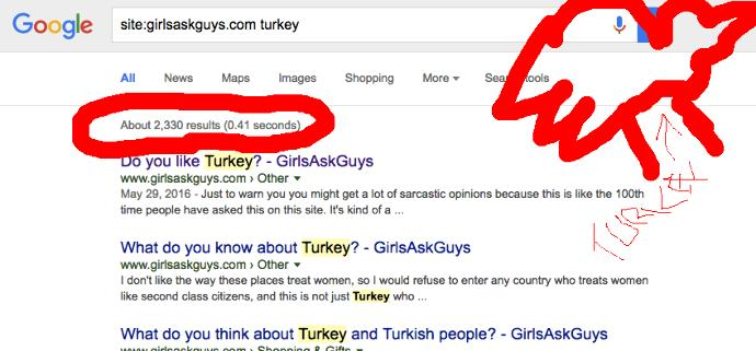Hey what do you guys think of Turkey and Turkish people?