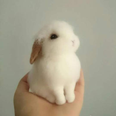 What makes something cute? Can anything be cute if it's small and fluffy?