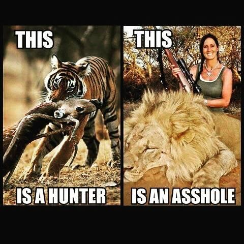What do you think of people who hunt for