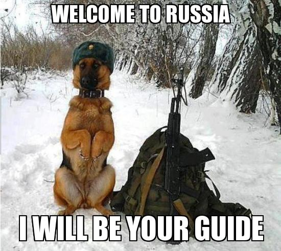 What do you think of Russians?
